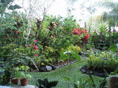 Julies garden